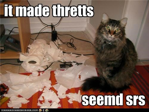 caption captioned cat excuse it made seemed serious shredded shredding solution threats toilet paper - 5266714368