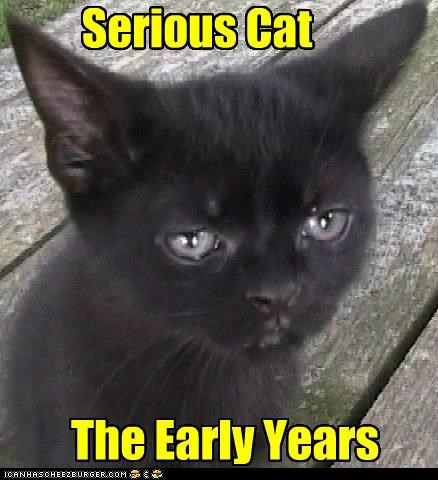 Serious Cat The Early Years