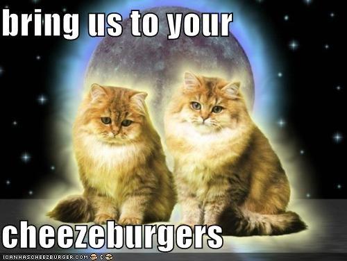 Cheezburger Image 5267646208