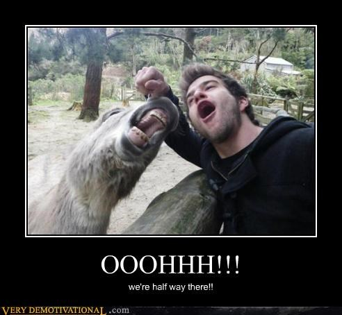 bro donkey dude Hall of Fame hilarious screaming wtf - 5268882688