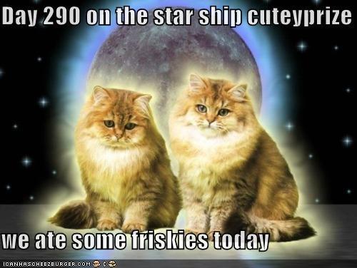 Cats I Can Has Cheezburger space Star Trek - 5269047296