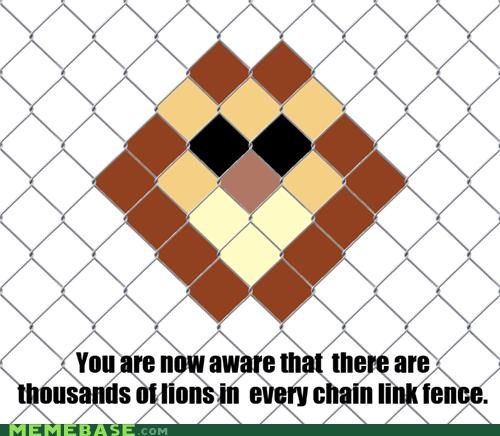chain link,fence,lion,SOON,triangle,what