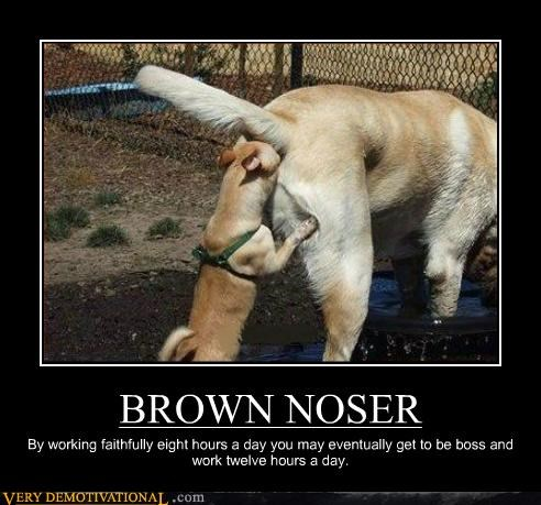Brown nosing dog photo in this demotivational poster