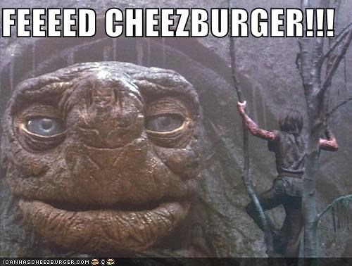 Cheezburger Image 5269826560