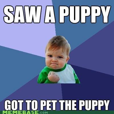 animemes best day pet puppy success kid - 5270369792