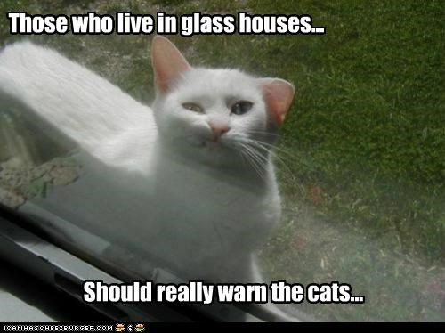 caption captioned cat glass Hall of Fame houses live oops saying should squished those warn window - 5270886400