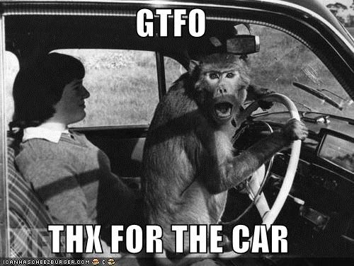 animals,car,drive,driving,gtfo,historic lols,monkey,stolen car,vintage