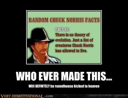 chuck norris heaven hilarious roundhouse - 5271887616