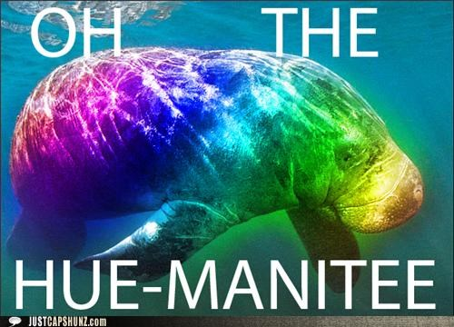 double meaning Hall of Fame homophone homophones hue literalism manatee oh the humanity prefix quote - 5273853440