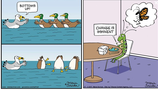 life funny animals web comics - 5273861