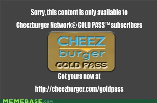 cheezburger,cheezburger gold,gold account