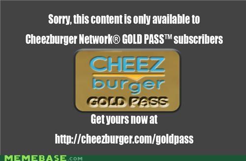 cheezburger cheezburger gold gold account - 5274006784