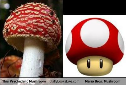 mario mushroom Mushrooms psychedelic video games - 5274638848