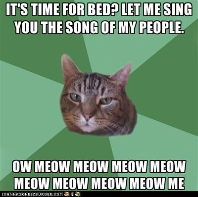annoying,bed,behavior,memecats,Memes,meow,meowing,rude,shut up,singing,Songs