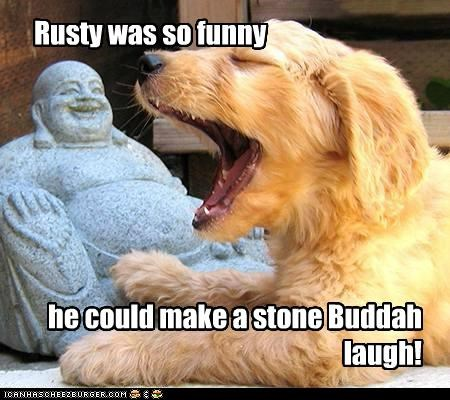 buddah funny humor humorous joke laugh laughing whatbreed