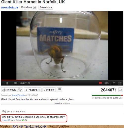 hornet Pokémon Terrifying youtube - 5275707648