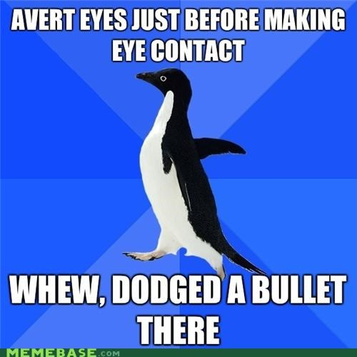 averted,bullet,crisis,eye conract,eyes,socially awkward penguin