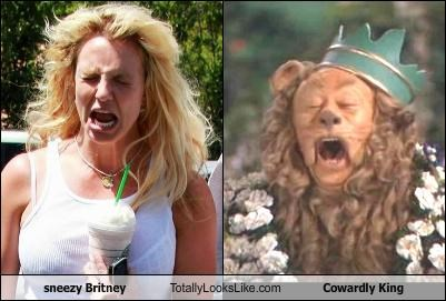 sneezy Britney Totally Looks Like Cowardly King