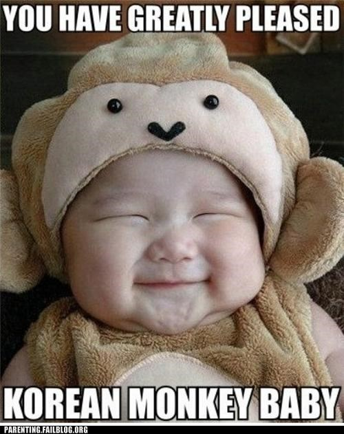 awww,baby,cute,korean,meme,monkey,Parenting Fail