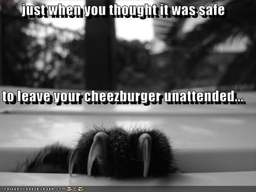 Cheezburger Image 527811328