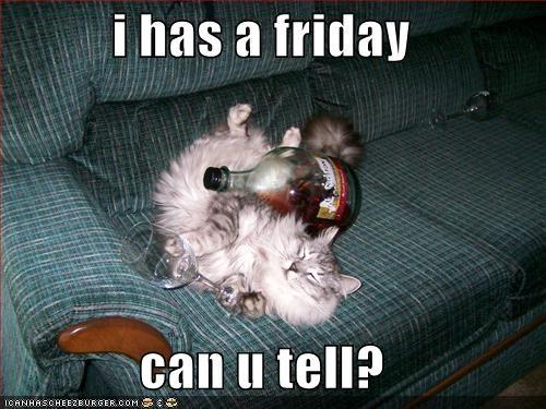 drunk FRIDAY wine