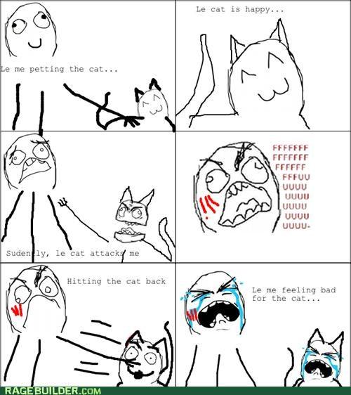 cat,cute,kitty,Rage Comics,Sad,scratch