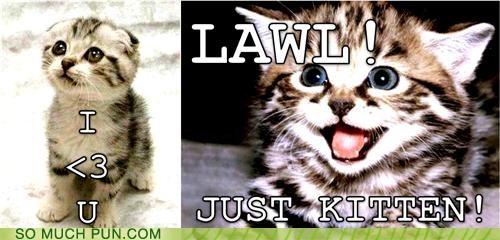 cat Cats cliché Hall of Fame ICWUDT kidding kitten literalism lolwut similar sounding stupid - 5278688256