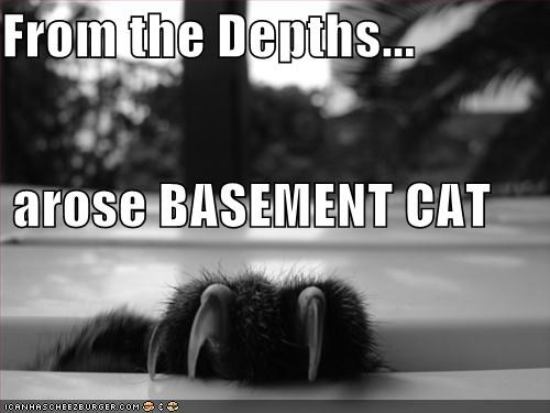 basement cat,claws,lolcats,paws,religion