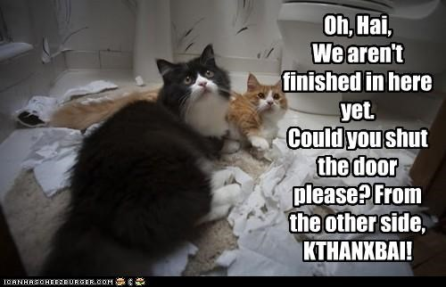 caption captioned cat Cats door finished kthxbai mess not ohai other request shut side yet - 5280420352