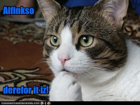 aifinkso am caption captioned cat cogito ergo sum I philosophy rené descartes therefore think thinking - 5280448768