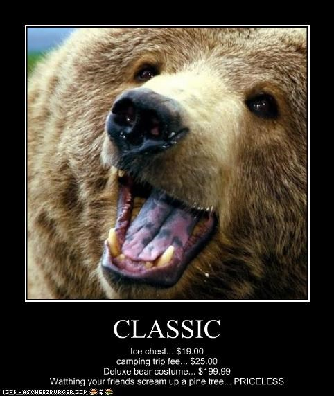 CLASSIC Ice chest... $19.00 camping trip fee... $25.00 Deluxe bear costume... $199.99 Watthing your friends scream up a pine tree... PRICELESS