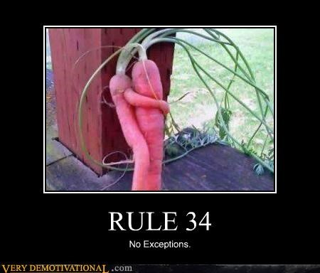 Rule 34 meme that states carrots are also included in such materials and a picture of a carrot with arms around another.