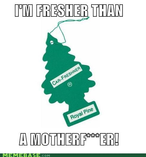 air freshener,cars,fresh