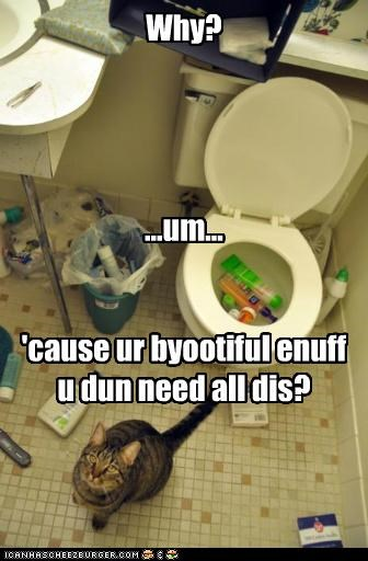 bathroom caption captioned cat disaster excuse explanation lie mess product products reason toilet why - 5281750784