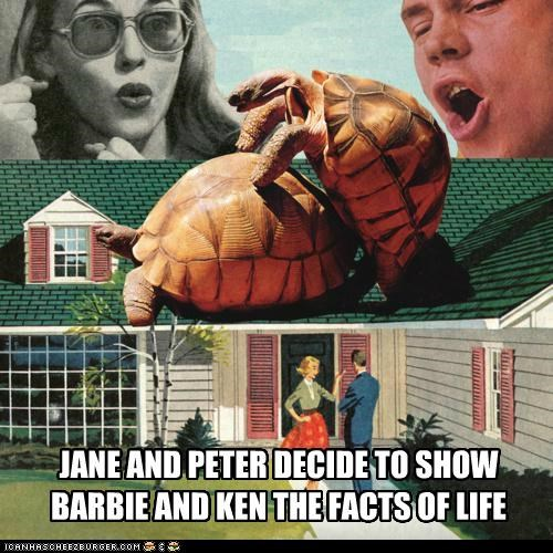 JANE AND PETER DECIDE TO SHOW BARBIE AND KEN THE FACTS OF LIFE