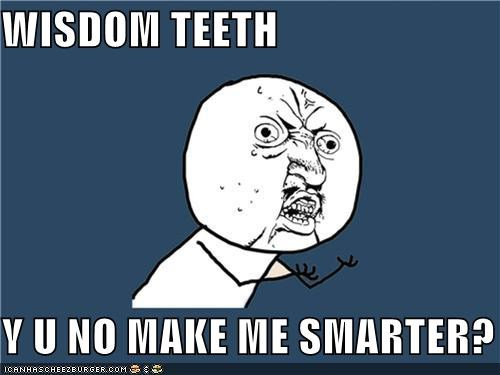 ouch,smarter,teeth,wisdom,Y U No Guy