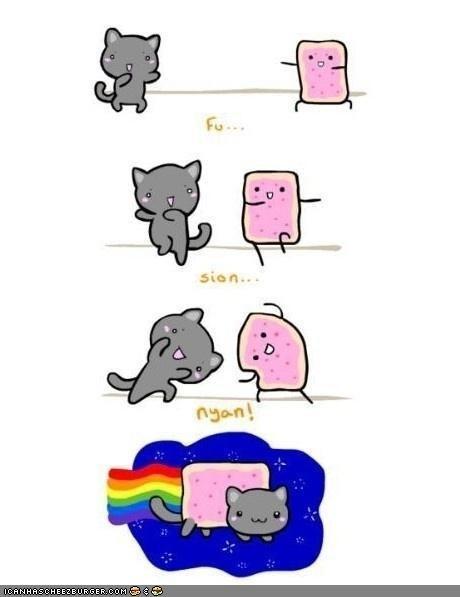 cute drawings fusion memecats Memes Nyan Cat poptarts - 5283011072