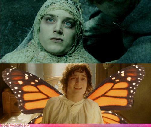 elijah wood funny Lord of the Rings Movie shoop - 5283319296