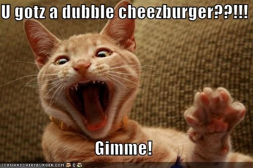 Cheezburger Image 5283773440