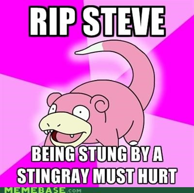 apple,best of week,meme,Memes,rip steve,slowpoke,steve irwin,steve jobs,stingray