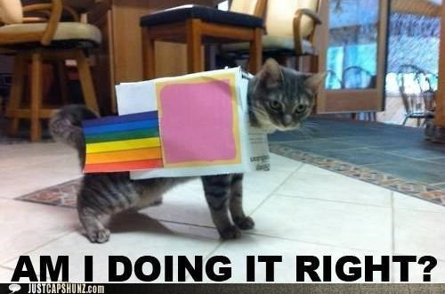 Cats costume doing it right doing it wrong I Can Has Cheezburger Memes Nyan Cat - 5285261056