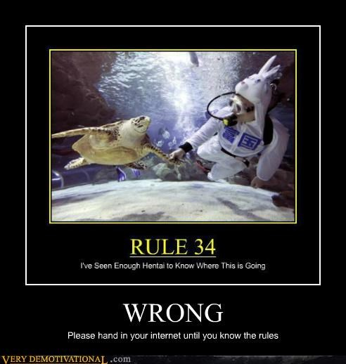 hilarious Rule 34 turtle wrong - 5285899008