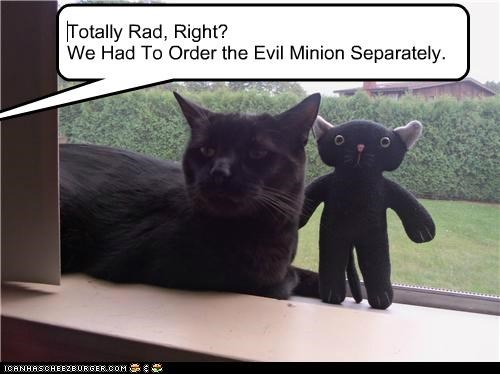 Totally Rad, Right? We Had To Order the Evil Minion Separately.