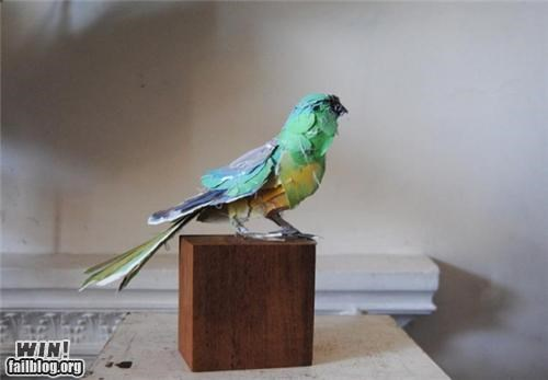 animals,art,bird,craft,paper,sculpture