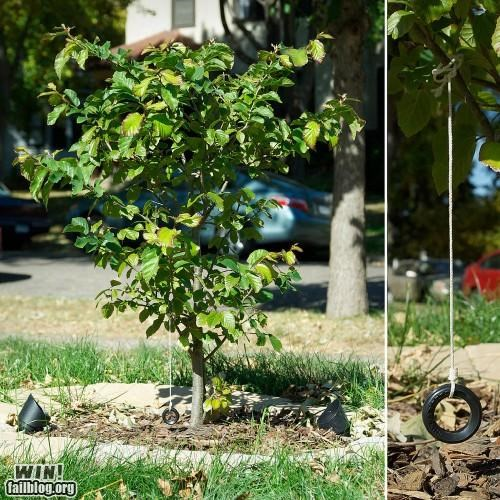 miniature nature playground tiny tire swing tree