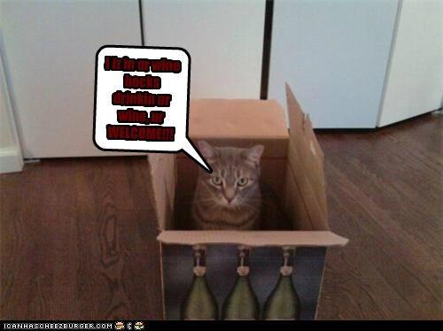 I iz in ur wine bocks drinkin ur wine, ur WELCOME!!!