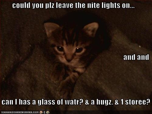 bedtime blankets kitten lolcats lolkittehs - 528695040