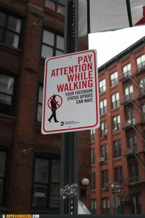 dangerous Hall of Fame sign status update texting while walking