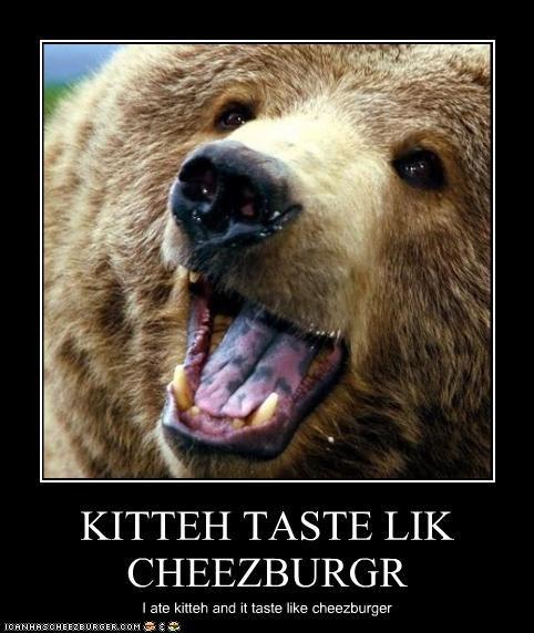 KITTEH TASTE LIK CHEEZBURGR I ate kitteh and it taste like cheezburger