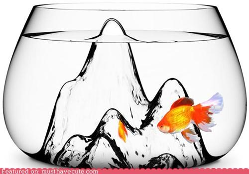 adventures,bowl,Fishbowl,goldfish,landscape,mountain